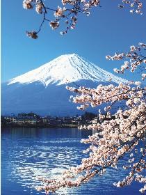 bild-ursprung-von-shiatsu-2.jpg